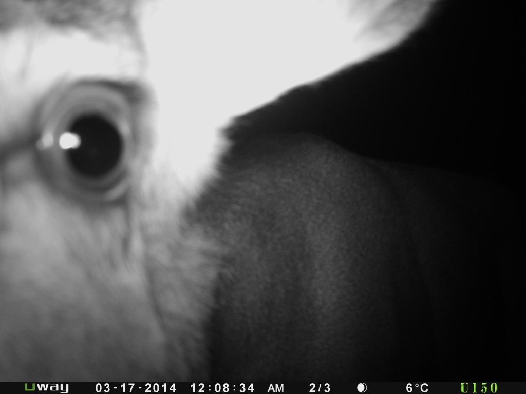 Close up selfie
