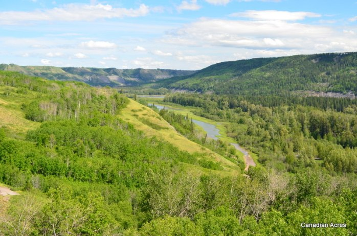 The Peace River Valley, view from the bottom quarter section near our game cam