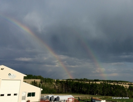With rain brings double rainbows :)