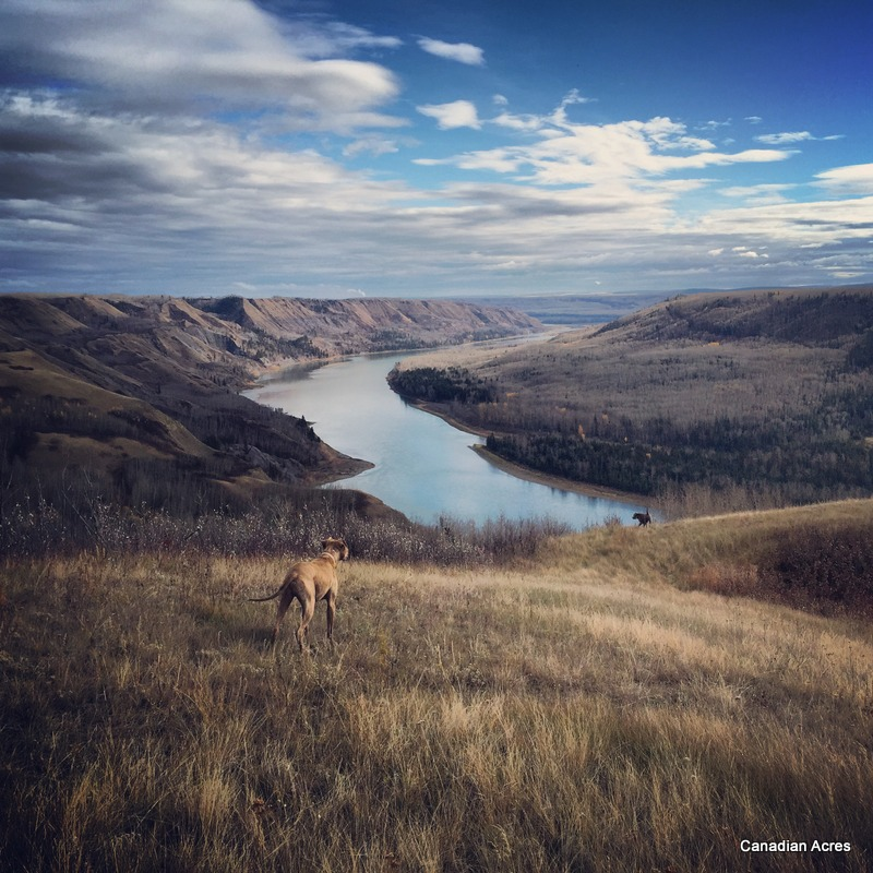 The Mighty Peace River